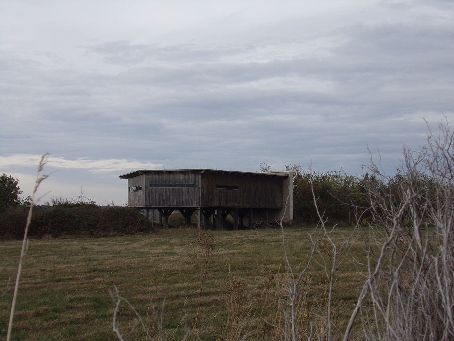 Bird Observatory of Black Land