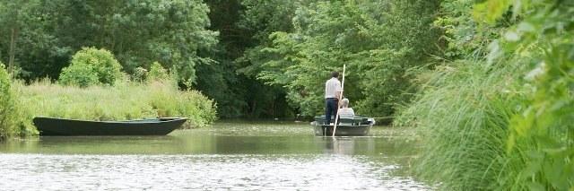 Oiseaux marais poitevin barque riviere